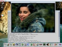 MPlayer on AmigaOS4