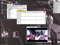 MPlayer on BeOS